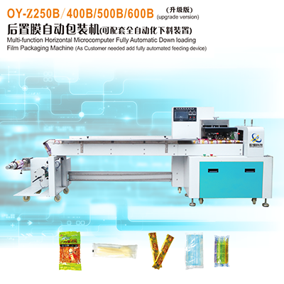 Multi-function Horizontal Microcomputer Fully Automatic Down loading 